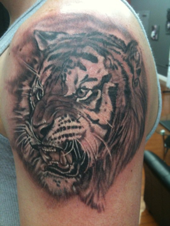 Black_and_grey_tattoo_tiger.jpg