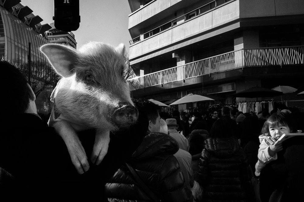 Courtesy of Tadashi Onishi | Void Tokyo