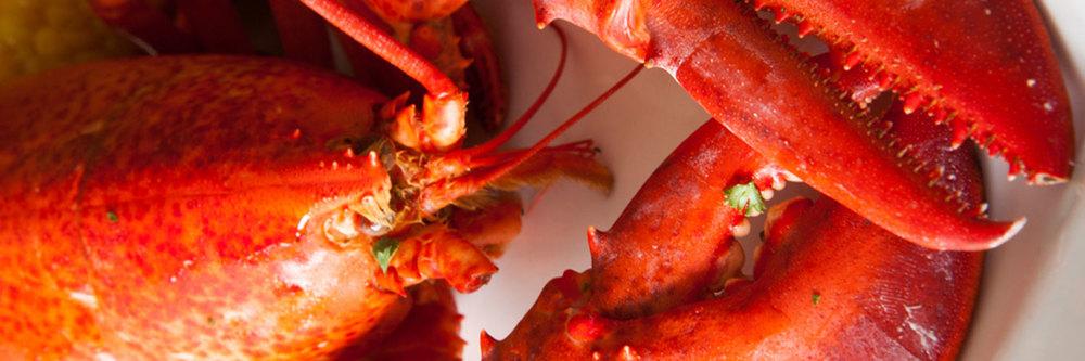 slide_lobster.jpg