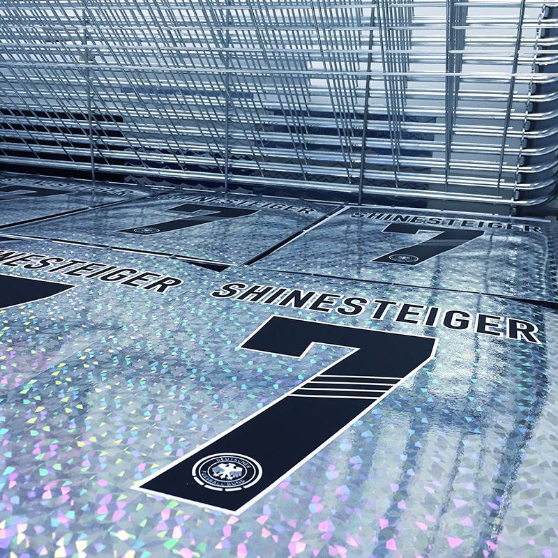 Shinesteiger-3.jpg