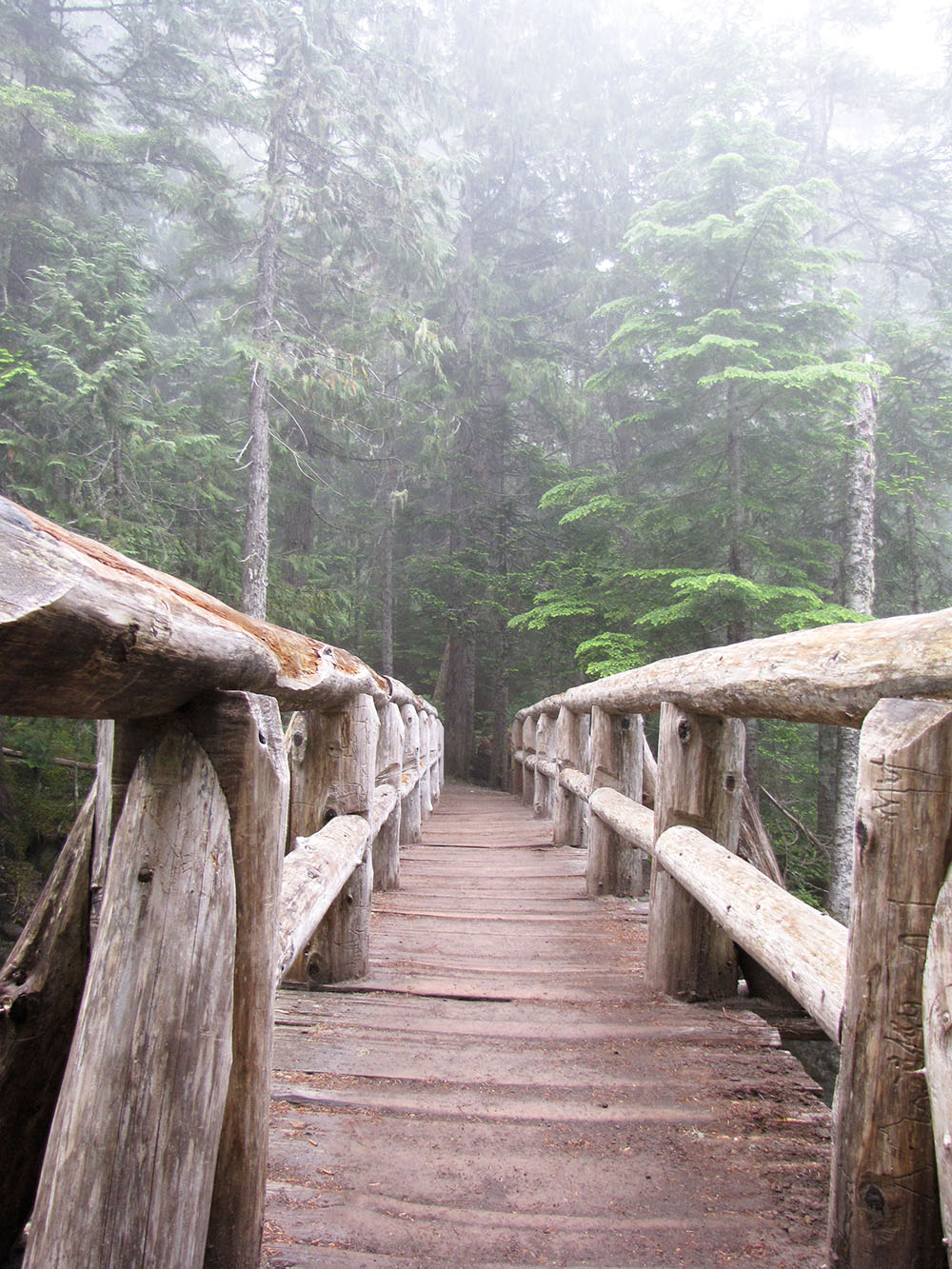 Comet Falls Trail starts with a sturdy bridge overlooking Christine Falls.