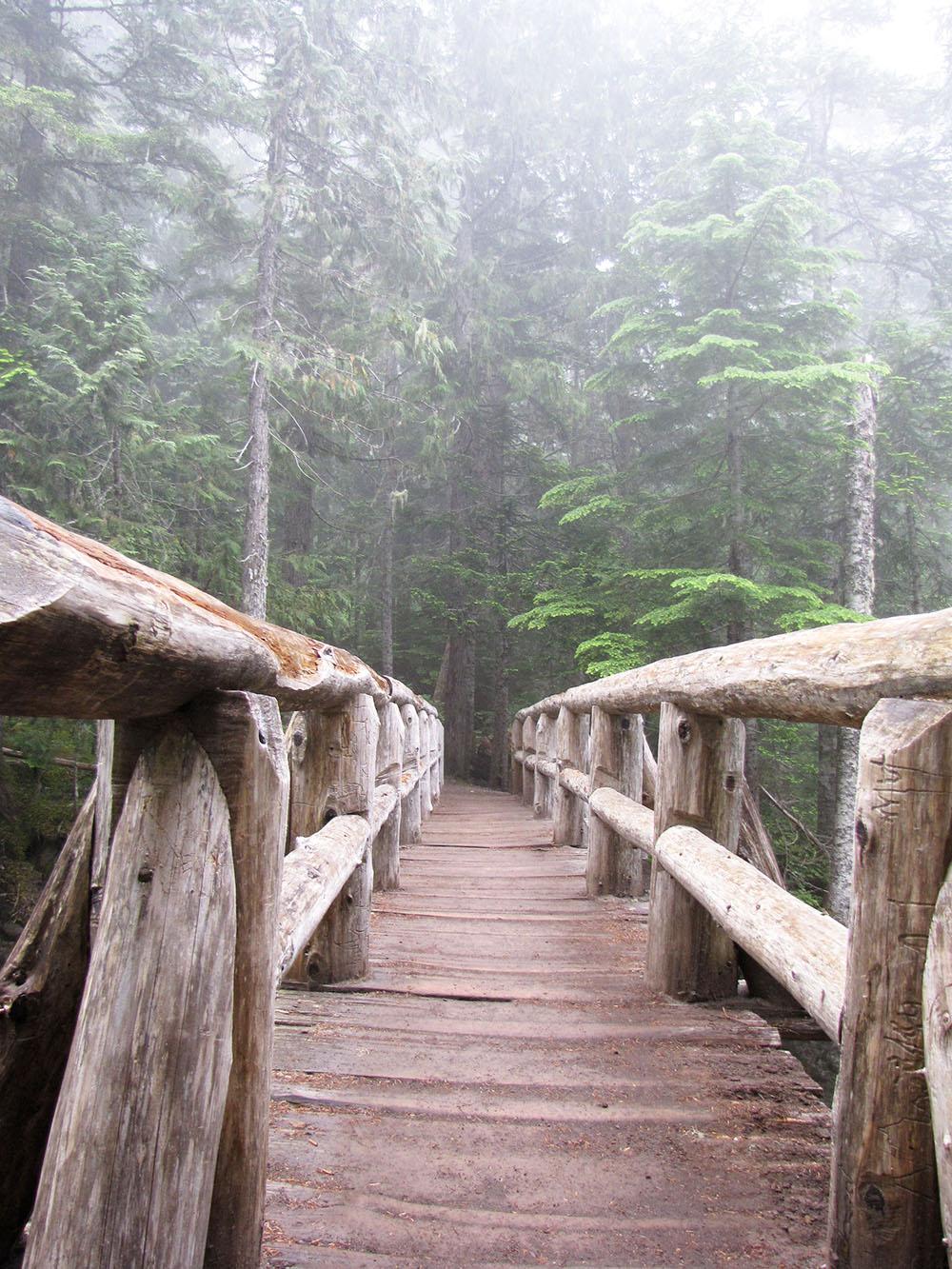 Comet Falls Trail starts with a sturdy bridge overlooking Christine Falls.