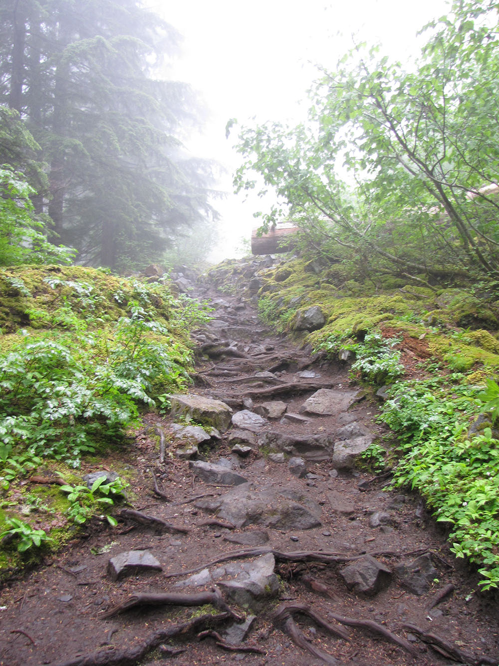 The hike is strenuous, but short: you'll ascend about 1900 feet over the course of a little more than two miles if you head all the way to the top of the falls.