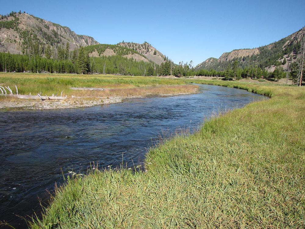 Yellowstone 2 Yardia