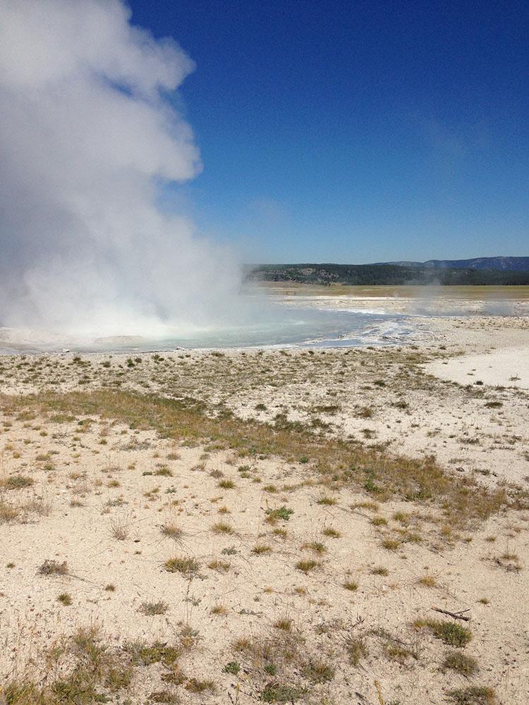 Yellowstone 4 Yardia
