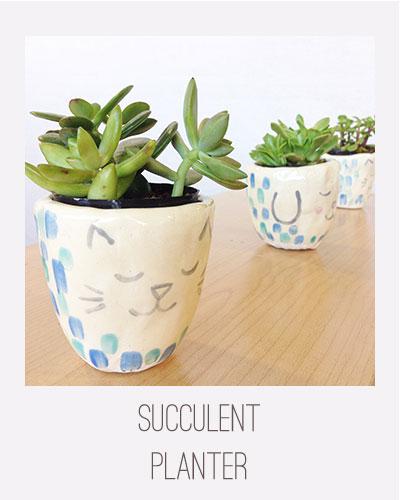 Yardia Succulent Planter