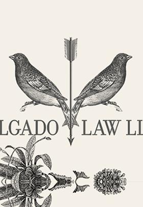 design-portfolio-lawyer-logo-thumb