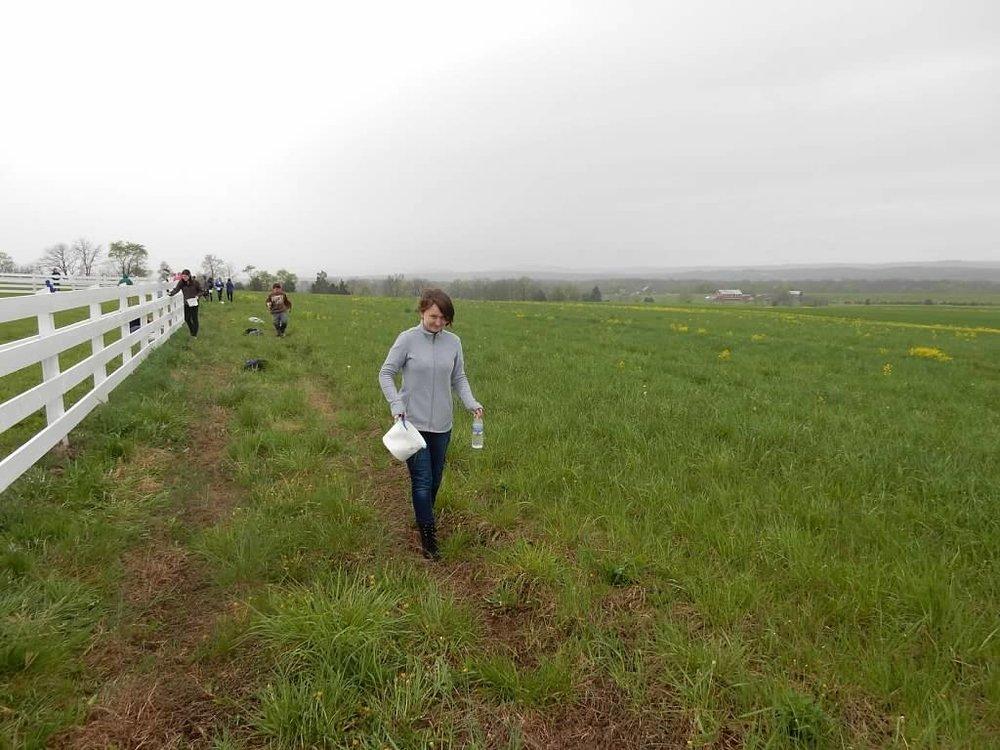 Gettysburg2017--14.jpg