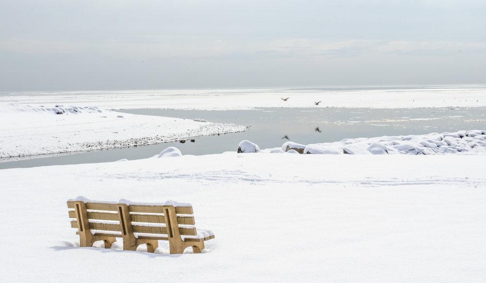 snowy-beach-1_16006086994_o.jpg