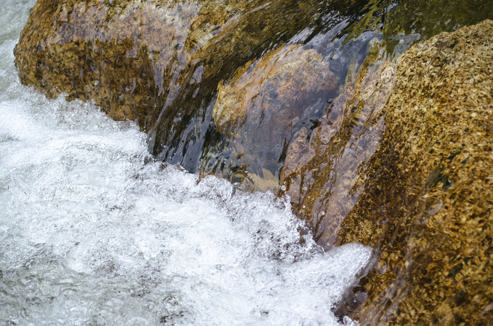 spring-water_25051728839_o.jpg