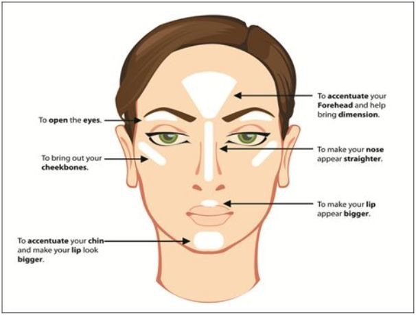 Places on the face to concealer/highlight.