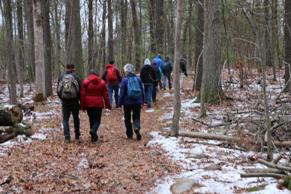 new_years_hike_2016-1520.jpg