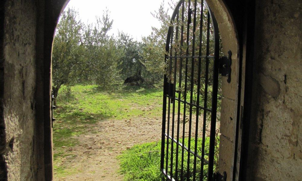 04_Camino_Estella-0709.JPG