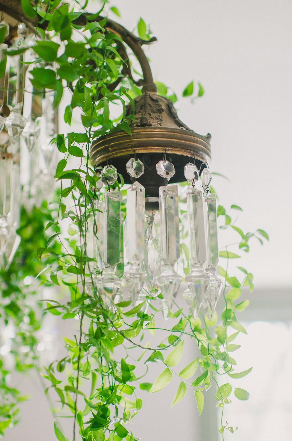 www.rachelpearlmanphotography.com-36.jpg