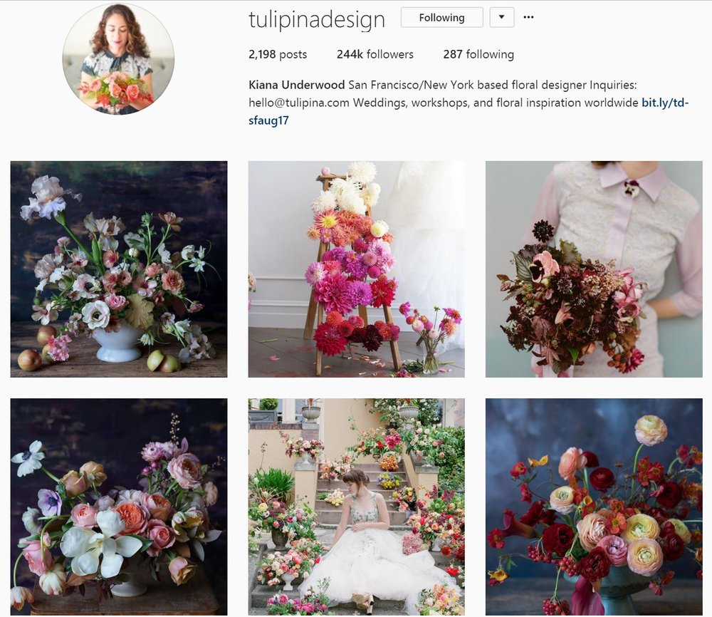 Tulipina Instagram Feed