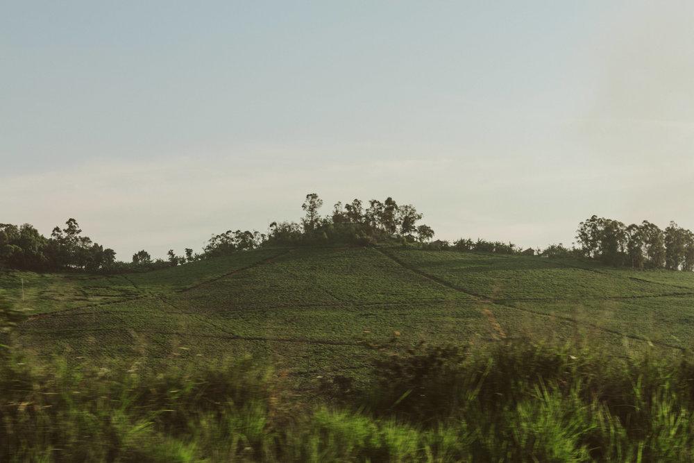 Ryan_Uganda-0017.jpg