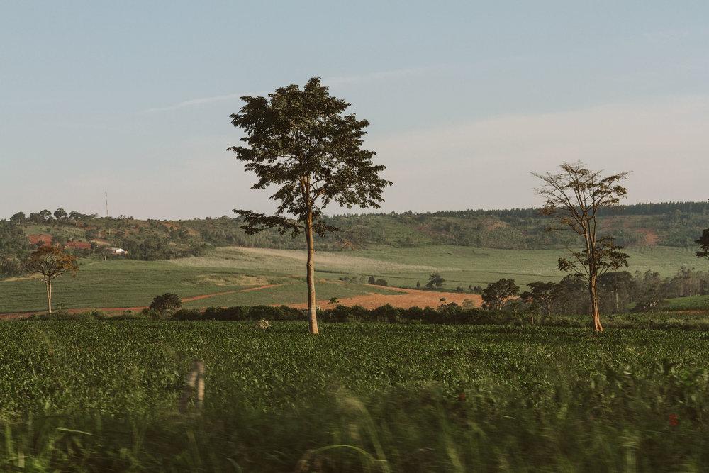 Ryan_Uganda-0023.jpg