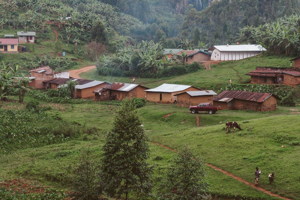 Ryan_Uganda-0262.jpg