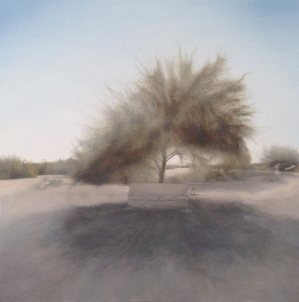 Slab City Tree, 2015 60x60""