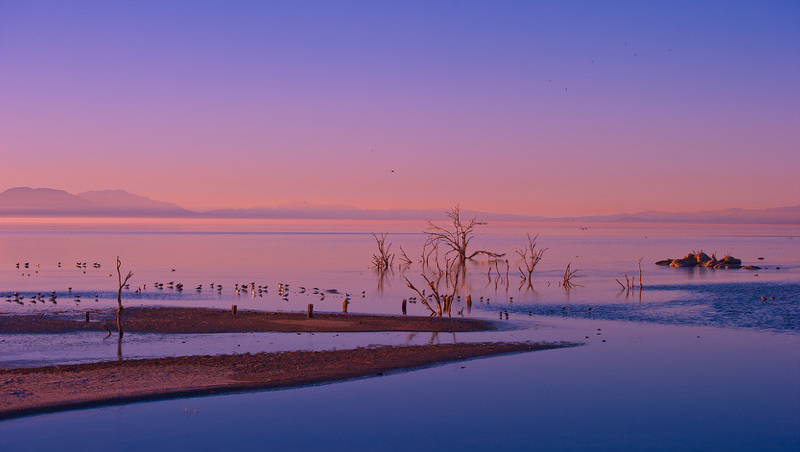 Victory Tischler-Blue, Salton Sea Sunset Glassine, Archival Pigment Print