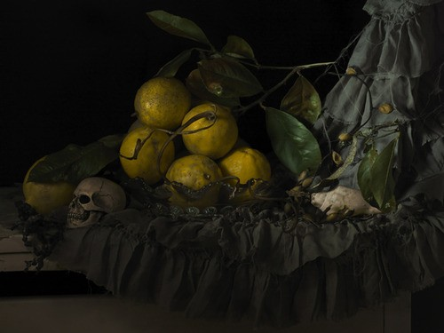 Fiona Pardington  Still Life with Seaweed & Lemons , 2012 Inkjet print on Epson hot press 310gsm cotton rag Dimensions variable Edition of 10   _______