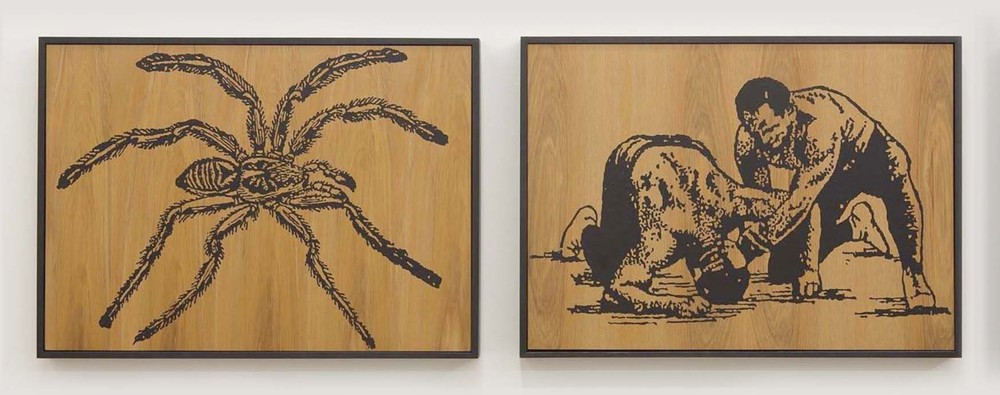 Wayne Youle  When Fear Takes Hold,  2012 Fluid acrylic on rimu (diptych) 450 x 590 mm each   _______