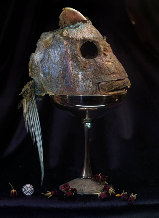 Fiona Pardington  Fish Head in a Silver Goblet with Rautawhiri Flowers, Ripiro , 2014 Inkjet print on Epson hot press natural 310gsm cotton rag 1050 x 787 mm image size, framed with museum glass   _______
