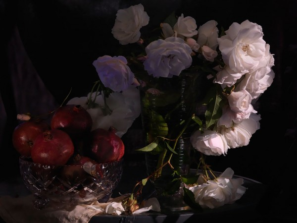 Fiona Pardington  Still Life with Wild White Roses, Photographic Beaker and Pomegranates  in a cut Crystal Bowl,  2013 Inkjet print on Epson hot press natural 310 gsm cotton rag Dimensions variable   _______