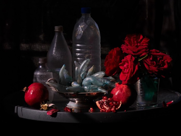 Fiona Pardington  Still Life with My Mother's Roses, Pomegranates & Plastic Bottles, Ripiro Beach , 2013 Inkjet print on Epson hot press 310 gsm cotton rag Dimensions variable Edition of 10   _______