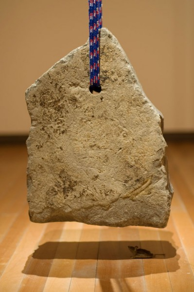 Wayne Youle  Safety found in the unknown (fingers crossed) , 2012 Stone, nylon rope and taxidermy   _______
