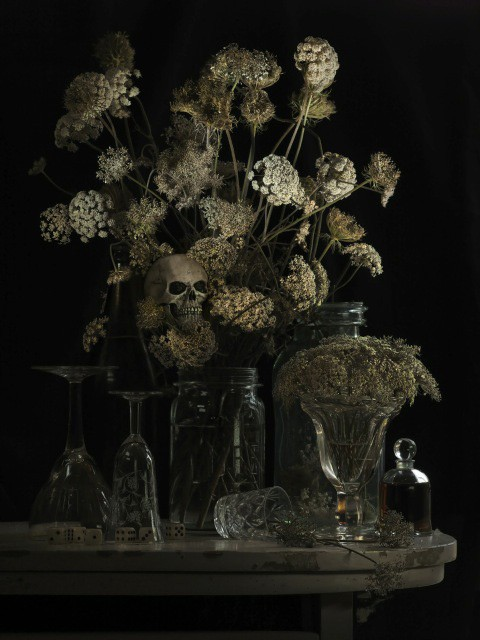 Fiona Pardington  Still life with Hemlock and Skull,  2012 Inkjet print on Hahnemule cotton rag Edition of 10   _______