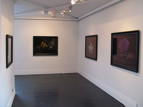 Installation View  Flora, Fauna , 2012 {Suite}, Wellington   _______