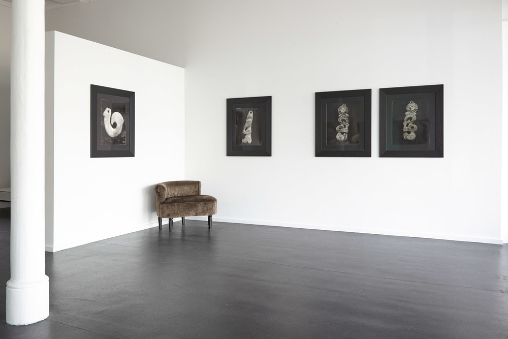 Installation view Fiona Pardington:  In My Dreaming I Saw - MOEA IHO NEI I AU , 2015 {Suite}, Wellington  _______
