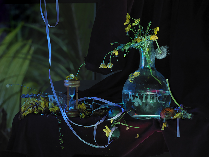 Fiona Pardington  Still Life with Hawea Wai, Buttercups & Fairy Clocks , 2013 Framed inkjet print on Epson hot press 310gsm cotton rag 825 x 1100 mm (image size) $12,500 incl. GST Edition of 10  _______