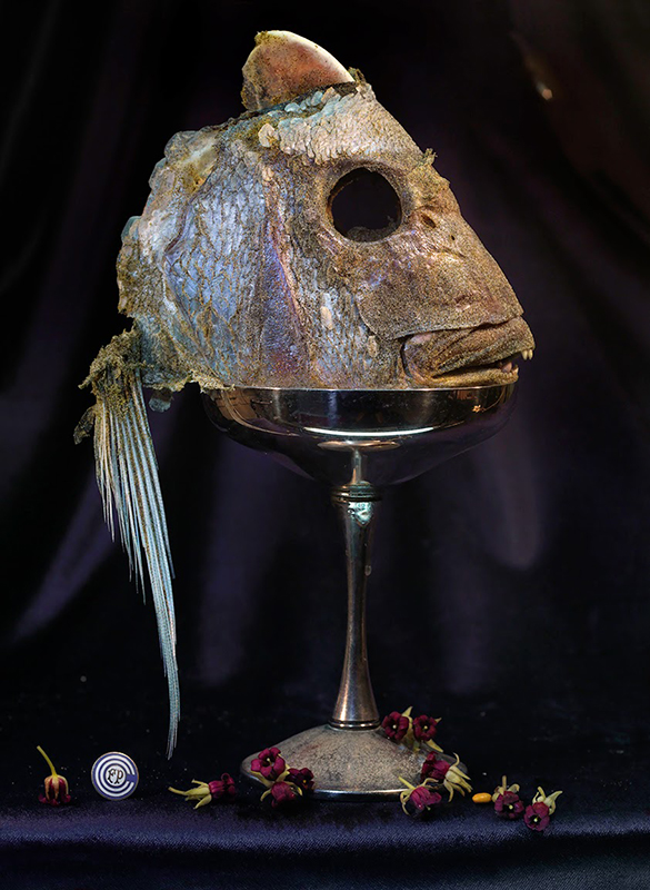 Fiona Pardington  Fish Head in a Silver Goblet with Rautawhiri Flowers, Ripiro , 2014 Framed inkjet print on Epson hot press natural 310gsm cotton rag 1100 x 825 mm (image size) $12,500 incl. GST Edition of 10  _______