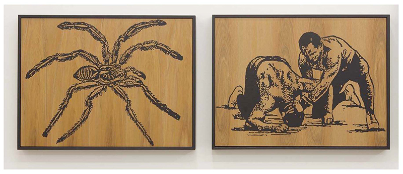 Wayne Youle  When Fear Takes Hold , 2012 Fluid acrylic on Rimu (diptych) 450 x 590 mm (each) $4,750 incl. GST  _______