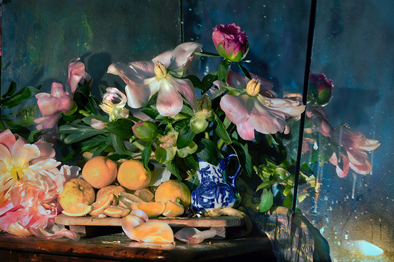 Fiona Pardington  Tanya's Peonies, Royal Doulton Oyama Creamer, and cut Lemonades , 2016 Framed inkjet print on Hahnemuhle photo rag 450 x 650 mm (image size) $7,500 incl. GST Edition of 10  _______