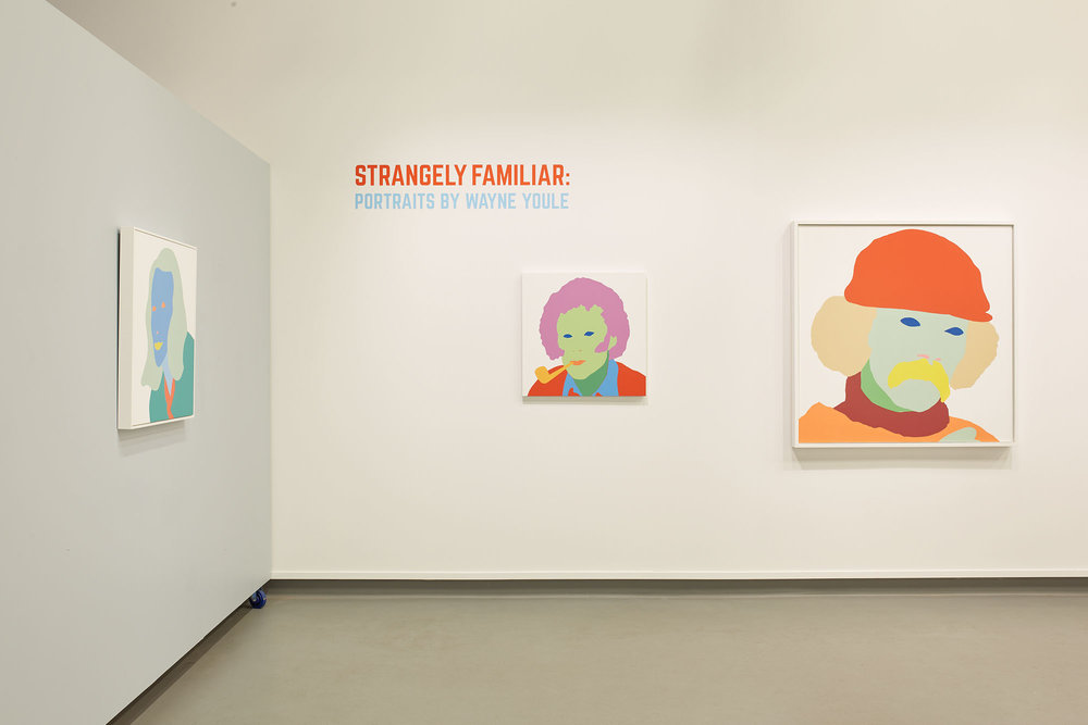 Wayne Youle  Strangely Familiar  Installation view New Zealand Portrait Gallery, Wellington  _______