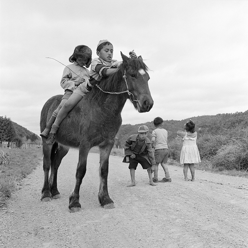Ans Westra  Near Ruatoki , 1963 Pigment print on Hahnemuhle Photo Rag 380 x 380 mm Edition of 25 $1,800 incl. GST  ______