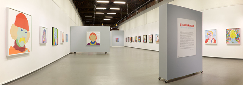 Wayne Youle  Strangely Familiar  Installation view New Zealand Portrait Gallery, Wellington  ________
