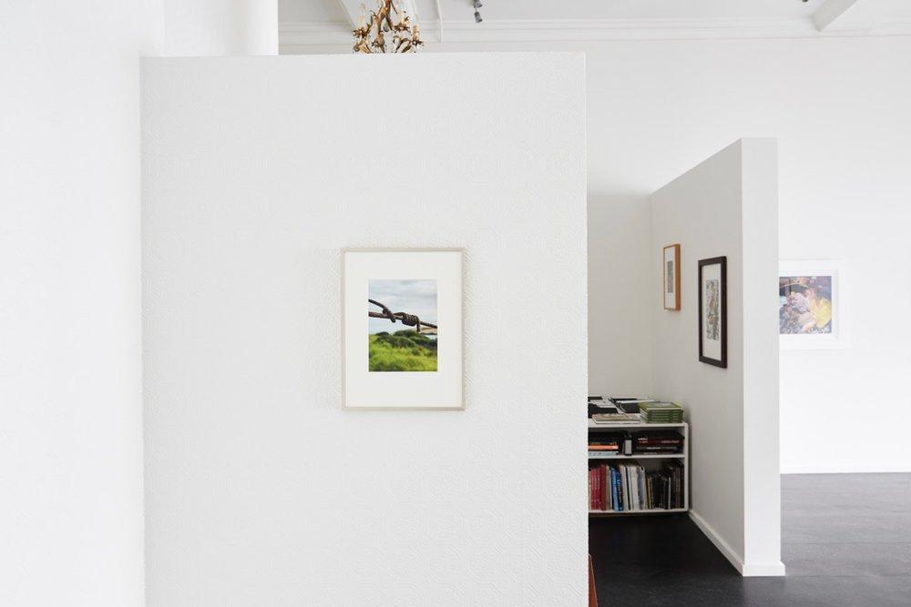 Peter Peryer Installation view {Suite}, Wellington  ______