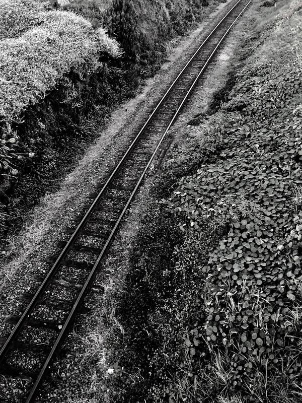 Peter Peryer  Rail,  2018 Pigment inks on Ilford Galerie Gold Mono Silk 490 x 370 mm  ______