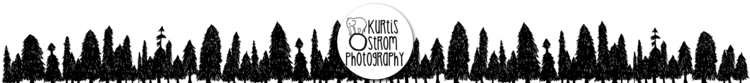 Kurtis Ostrom Photography