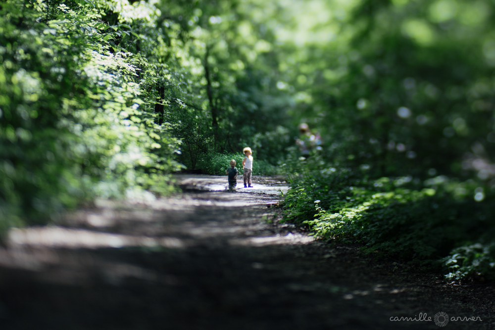 Documentary Photography in Prospect Park, Brooklyn