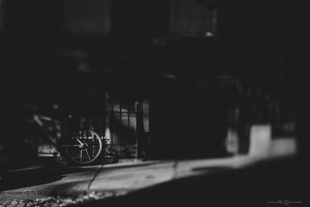 Light Seeker in Dumbo, Brooklyn