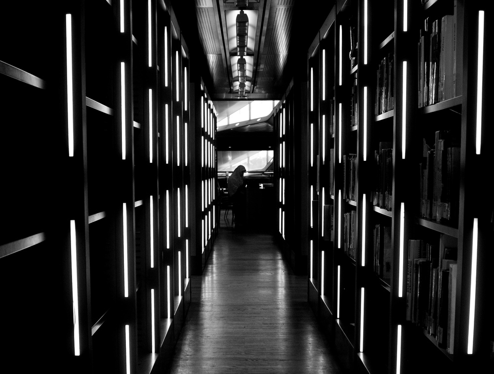 Library stacks in Alexandria