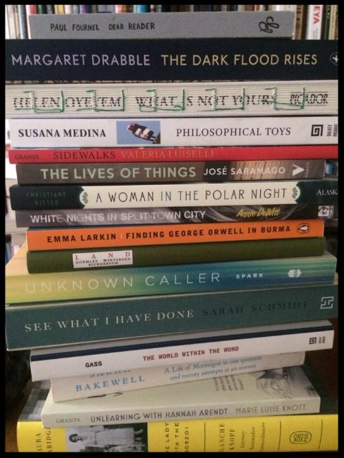 Adult books to read in 2017, Rebecca Hutcheson.