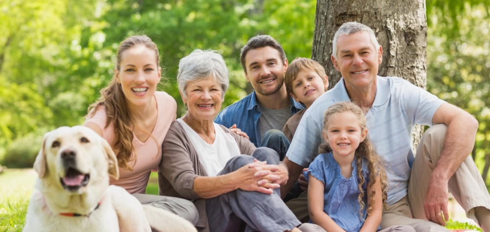 Smiles Can Be Seen Across Generations