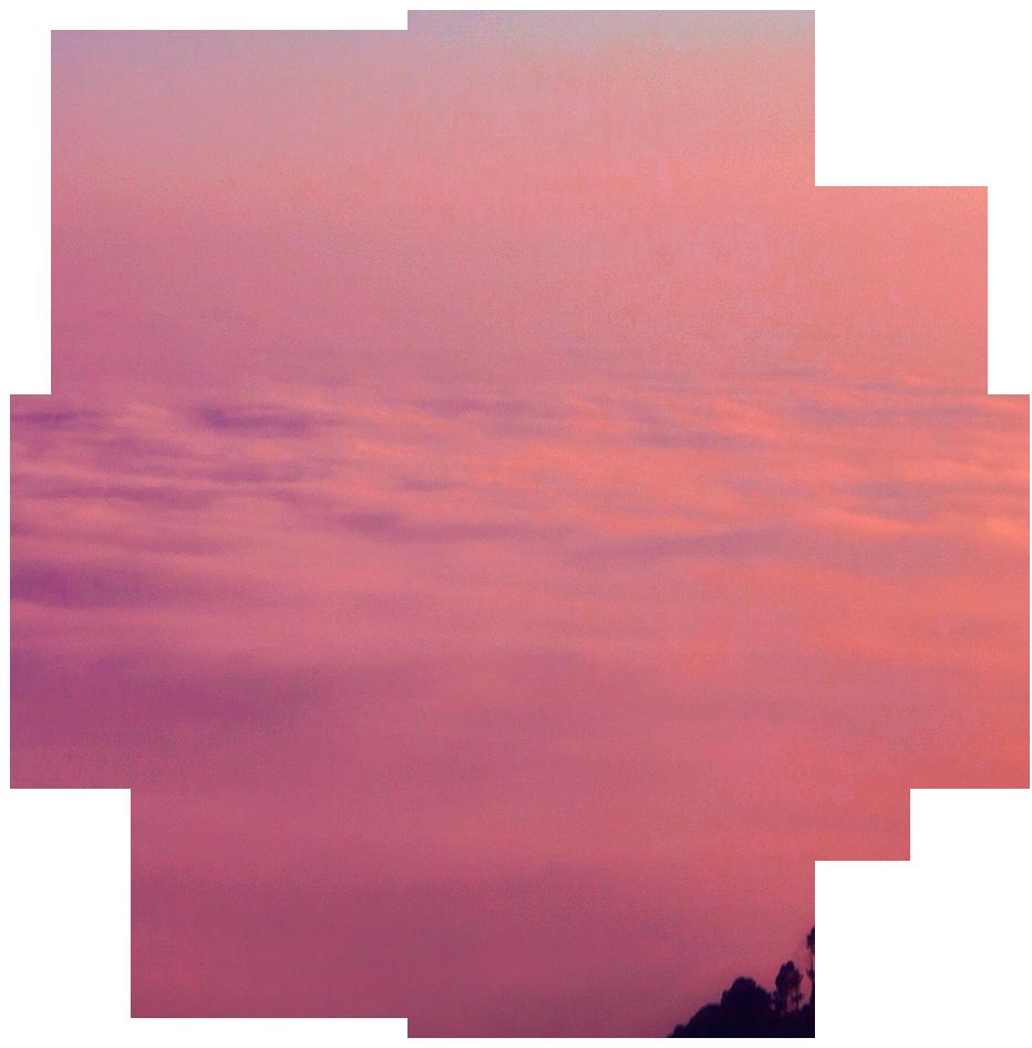 reiki-2-flower.png