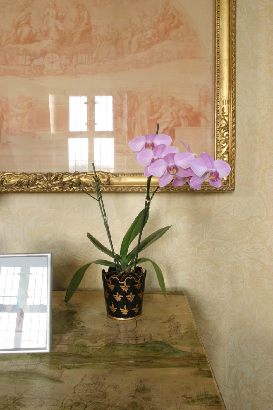 Carol_Fulton_Photography_interiors_Chilham_Castle__001.jpg